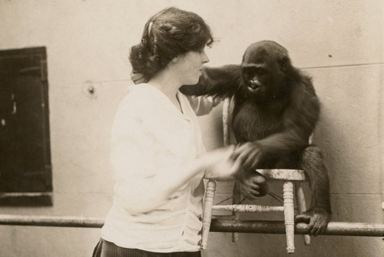 DjunaBarnesWithGorillaAtBronxZoo+1914+UniversityOfMaryland Libraries